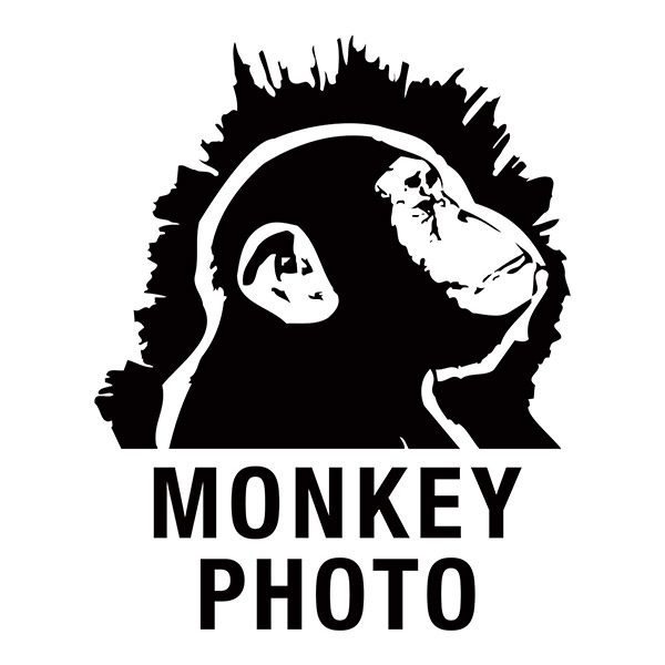 Monkey Photo Logo